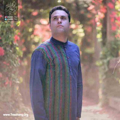 متن آهنگ جدید ماه و پلنگ از وحید تاج