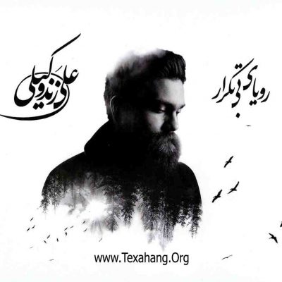 متن آهنگ جدید رویای بی تکرار از علی زند وکیلی